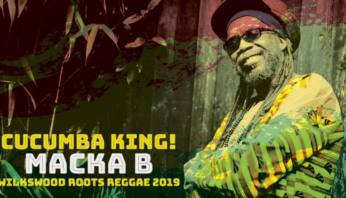 Macka B at Wilkswood Roots Reggae 2019