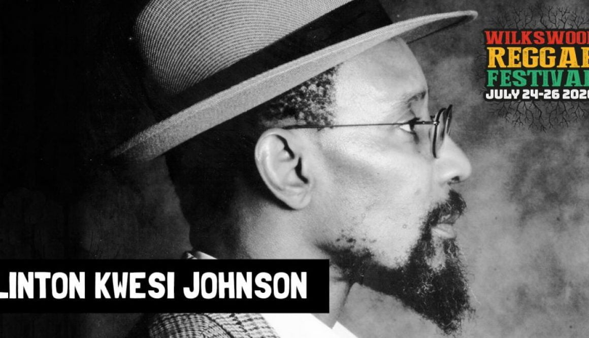 Linton Kwesi Johnson at Wilkswood Reggae 2020
