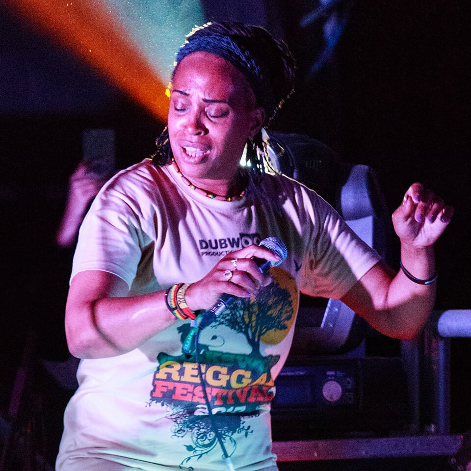 Mad Professor + the Ariwa Posse complete the Headliners at Wilkswood Reggae 2020