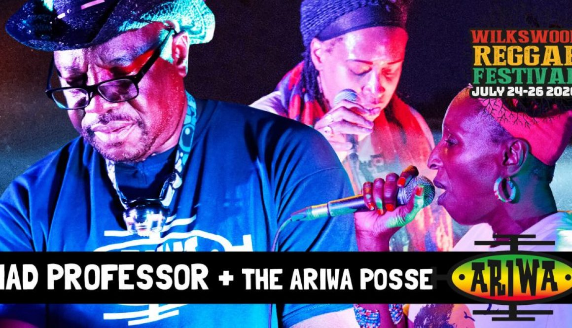 Mad Professor + the Ariwa Posse at Wilkswood Reggae 2020